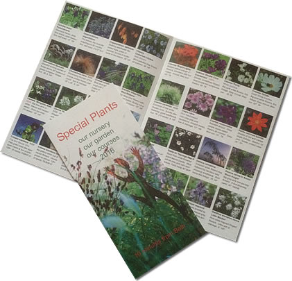 Seed Catalogue 2016